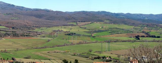 Fornitore ufficiale servizio fitosanitario della Toscana